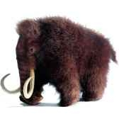 automate mammouth 4661 anima 0282