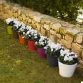 pot petunia 18 new garden newgarden18