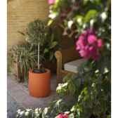 pot palma 5 new garden newgarden24