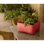 pot amapola 4 new garden newgarden25