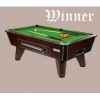 Billard toulet winner